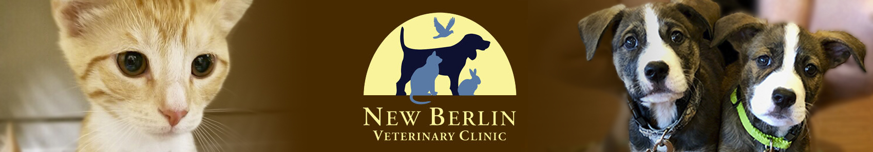 Marcy Veterinary Clinic