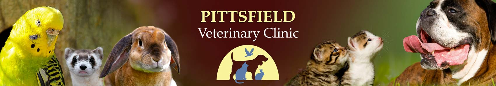 Pittsfield Veterinary Clinic